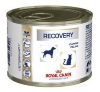 vdiet dog & cat recovery boite 195g x12 (ROYAL CANIN)