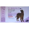 eliminall chien 268mg  3 pipettes (PFIZER)