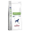 Vdiet dog urinary S/O 13kg (ROYAL CANIN)
