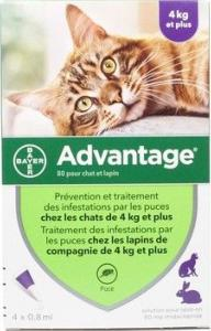 advantage chat 80 4 pipettes (BAYER)