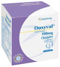 Doxyval  250mg 200cp (SOGEVAL)