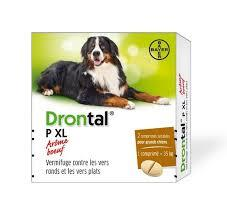 Drontal P XL 2cp (BAYER)