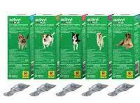 activyl tick+ grand chien 4p (MSD)